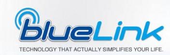 Hyundai Blue Link 1800 Customer Service Phone Number, Toll ...