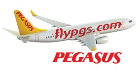 pegasus airlines contact address 4478